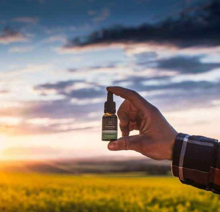 Gdzie kupić olejki CBD bezpiecznie i komfortowo?